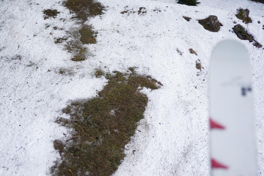 Grass under ski lift